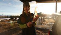 Yukon Veterineri Her Pazartesi Nat Geo People'da
