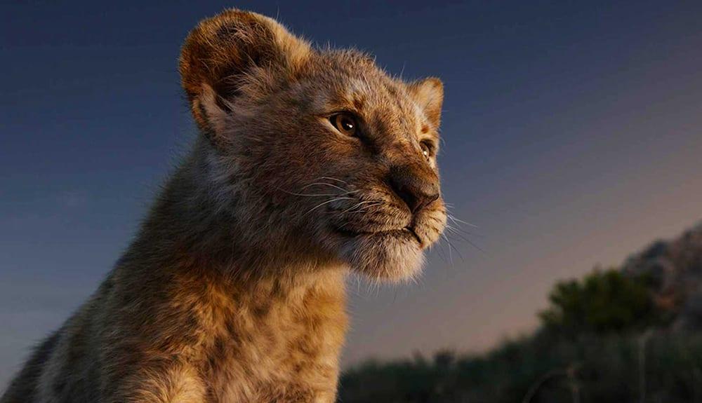 The Lion King (2019) İncelemesi