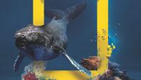 National Geographic Now, beIN CONNECT'te Yayına Başladı
