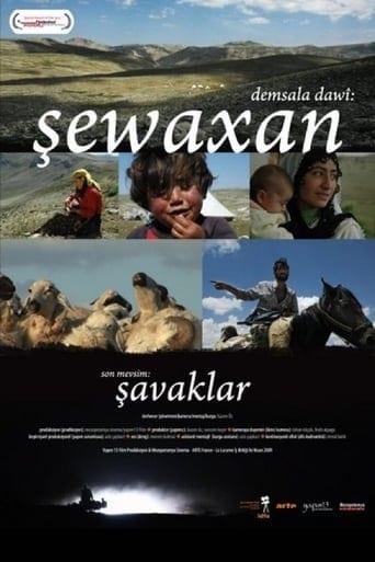 The Last Season: Shawaks poster