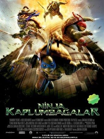 Ninja Kaplumbağalar poster